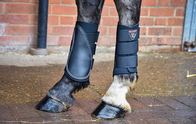 Tri-Zone Horse Brushing Boots review
