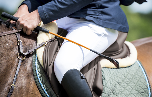 eventing whip rules