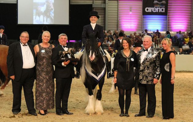 Frozen rescue foal becomes Equifest champion