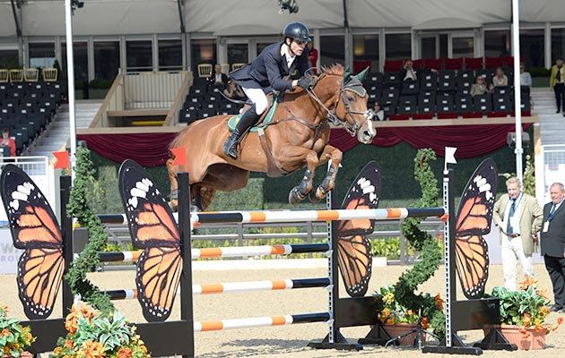 Horses For Sale Amp Equestrian News From Horse Amp Hound