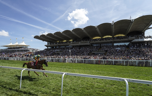 tickets on sale for Goodwood and York Ebor festivals
