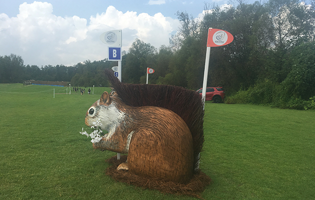 World Equestrian Games cross-country course