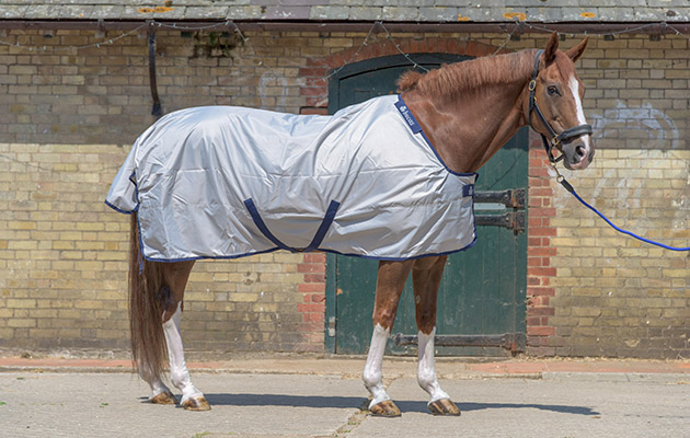 Bucas Sun Shower Turnout Rug Review