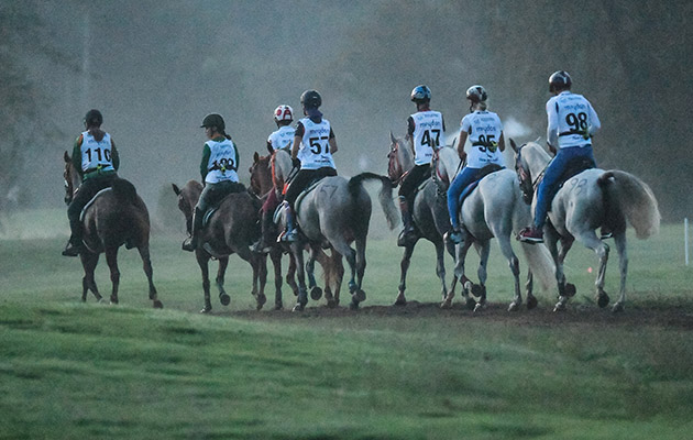 Endurance riders canter after the start Photo FEI/MARTIN DOKOUPIL