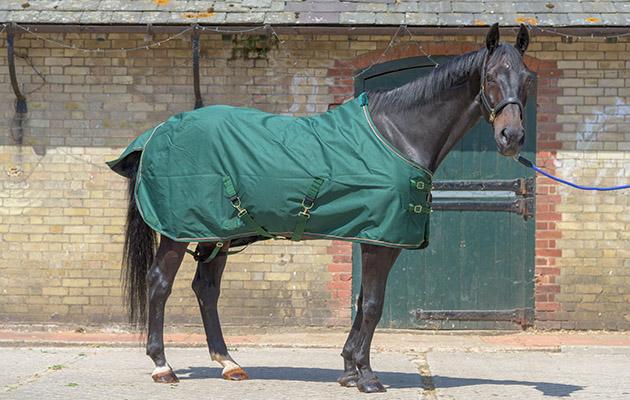 Kensington Rain Sheet lightweight