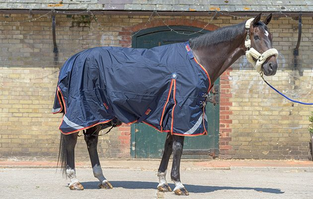 Premier Equine Buster Zero Turnout Rug Excellent In All Ways 10