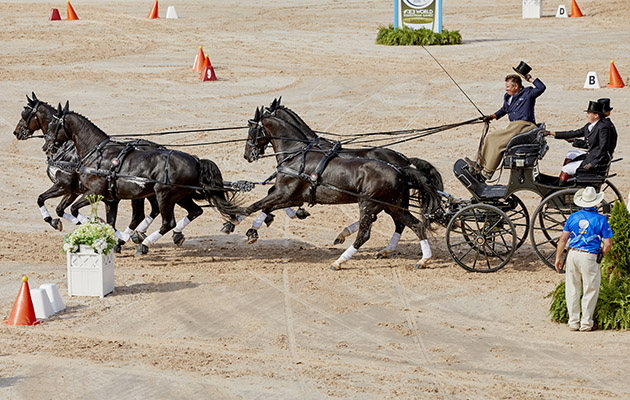World Equestrian Games driving results: Boyd Exell wins individual gold