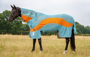 Best fly rugs to protect your horse