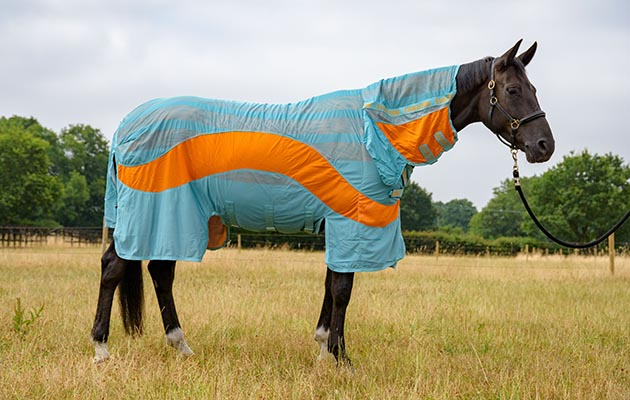 Best fly rugs for horses: Amigo Vamoose Evolution fly rug review