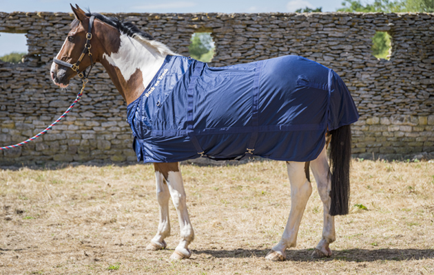 Back on Track Mesh Rug review   Horse