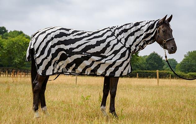 Bucas Buzz Off Zebra Full Neck Fly Rug