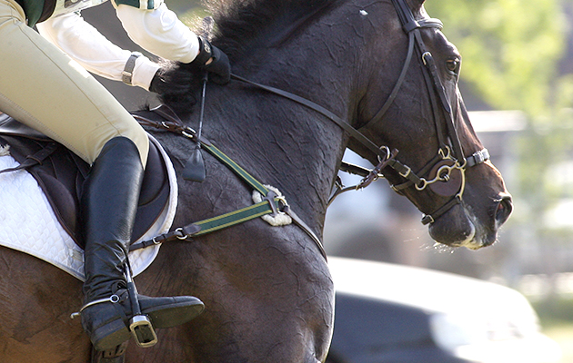 Equestrian Eventing - News, Athletes, Olympic Medal Record