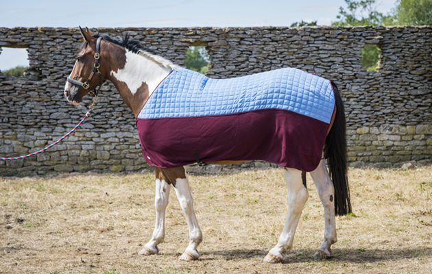 Thermatex Duet Cooler Rug A Fantastic Quality 10