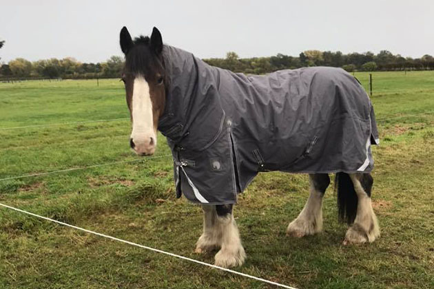Hovis' Friday diary: I have exciting news and I'm bursting to tell you
