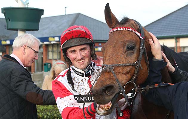 Winning racehorse with only one ear captures public's imagination