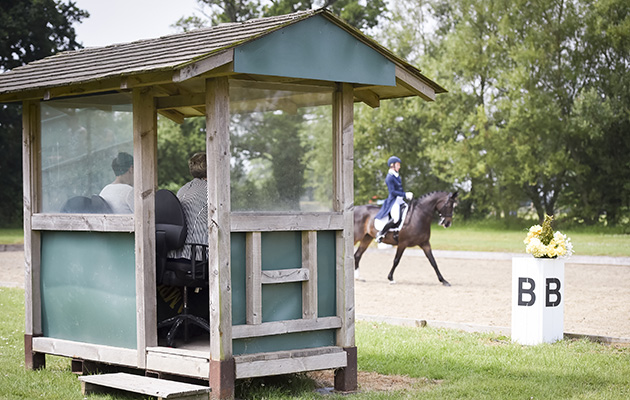 New recommendations to improve dressage judging