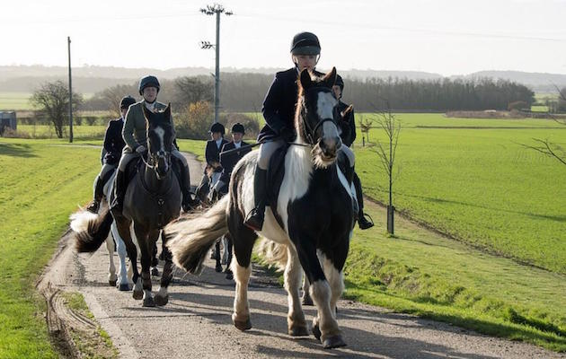 Abandoned colt becomes rolls royce hunting cob horse & hound
