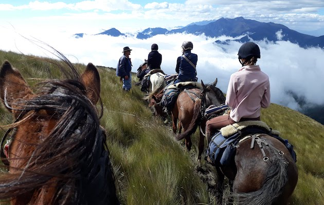 Ecuador riding holiday