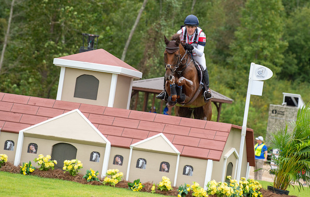 Elite British horses to benefit from fighter jet technology