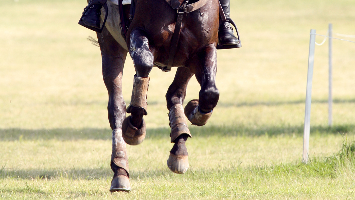 British Eventing fixtures list international championship 2020 2025 Library image.