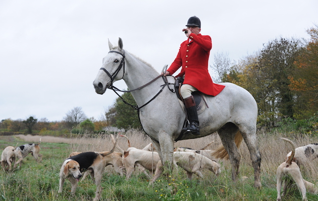 Peter Collins, Quorn huntsman with hounds