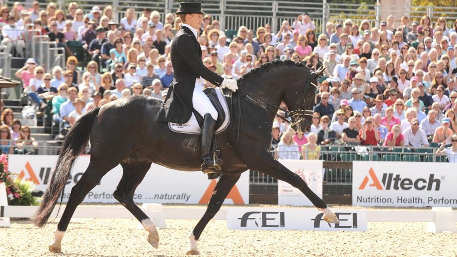 Edward Gal and Totilas at the 2009 European Championships Totilas KWPN stallion show 2019