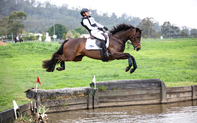 Check out this exuberant event horse with invisible wings