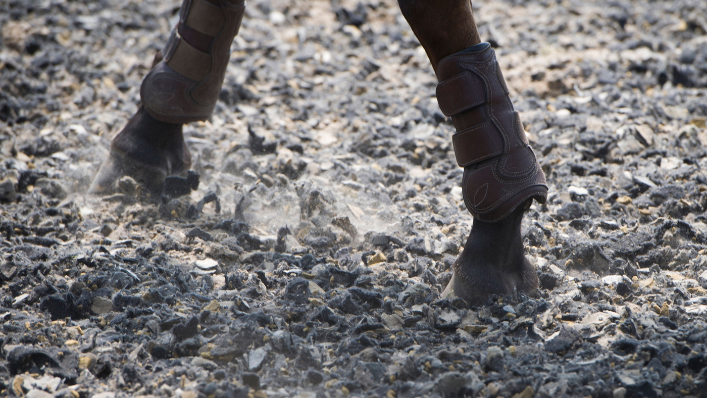 how to ride counter canter