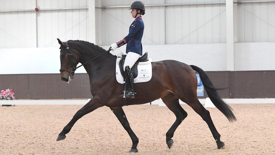 Charlotte Dujardin riding MSJ Charmer at Addington winter regionals 2019
