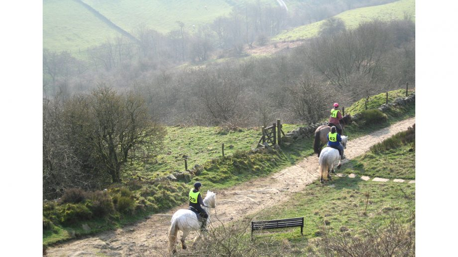 Saddlers Way Sport Endurance pleasure ride