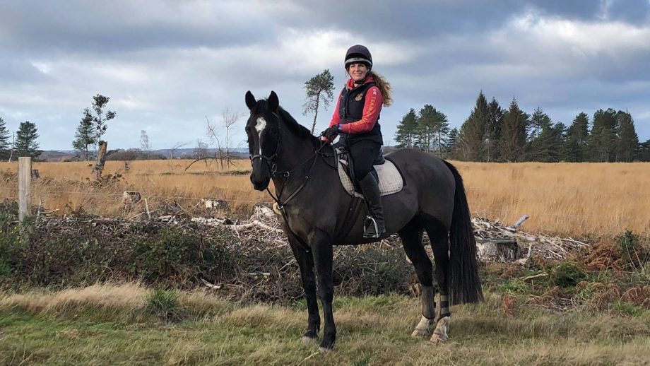Rider praises her 'one in a billion' horse after they were surrounded by a herd of cows on bridleway