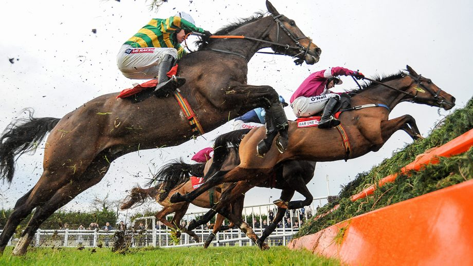 Naming a racehorse Meath , Ireland - 4 December 2016; A general view of runners and riders on their first time round including Anibale Fly, left, with Barry Geraghty up, and A Toi Phil, with Bryan Cooper up, during the Bar One Racing Drinmore Novice Steeplechase at Fairyhouse Racecourse in Ratoath Co Meath. (Photo By Cody Glenn/Sportsfile via Getty Images)