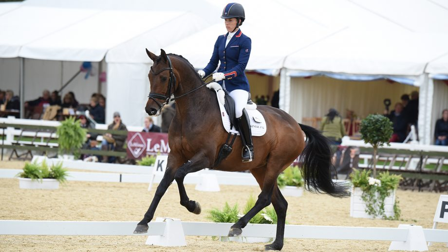 Olympic stars to shine at Hartpury as European selection approaches