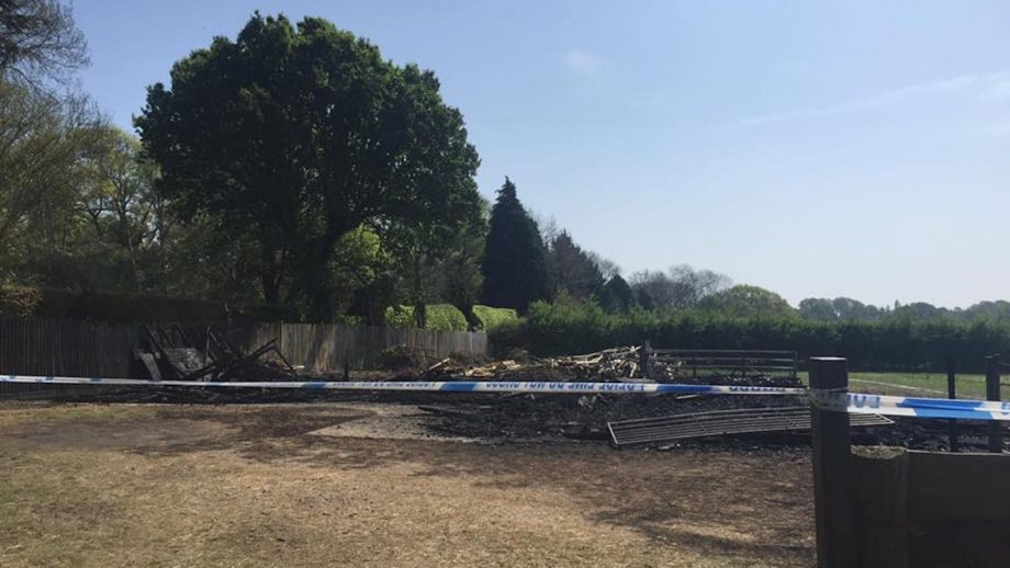 Vet's dreams go up in flames as arsonists burn yard to the ground