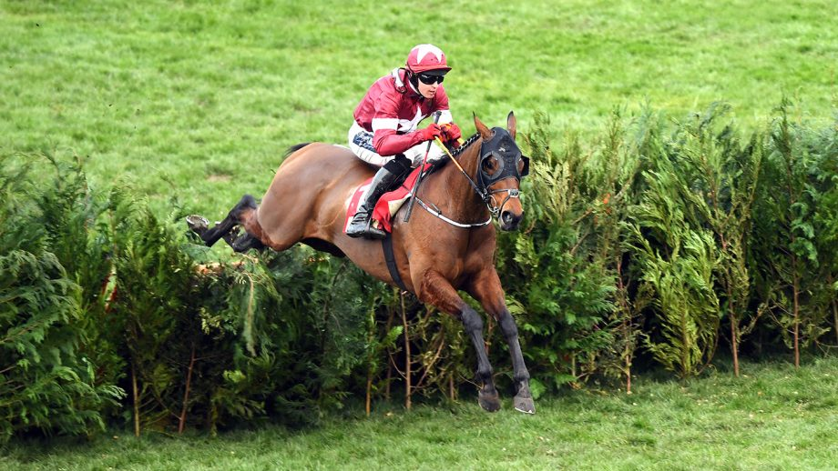Grand National runners 2021: 106 horses entered to the ...