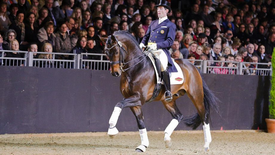 'I can hop on and ride grand prix movements in a headcollar': eight things that may surprise you about super-sire Fidertanz