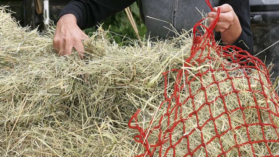 FILLING HAYNET WITH HAY/ HAYLAGE FROM BALE.