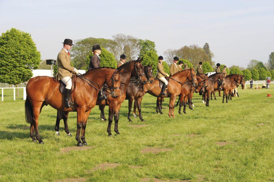 Small hunter class line up
