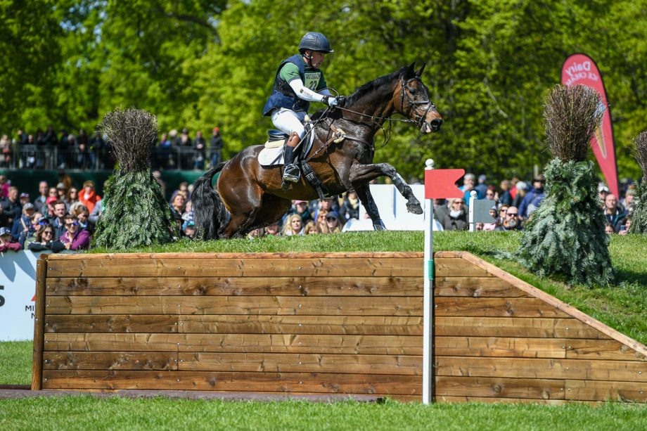 Simon Grieve's eventing (and Badminton) blog: disappointed, yes, but we'll live to fight another day