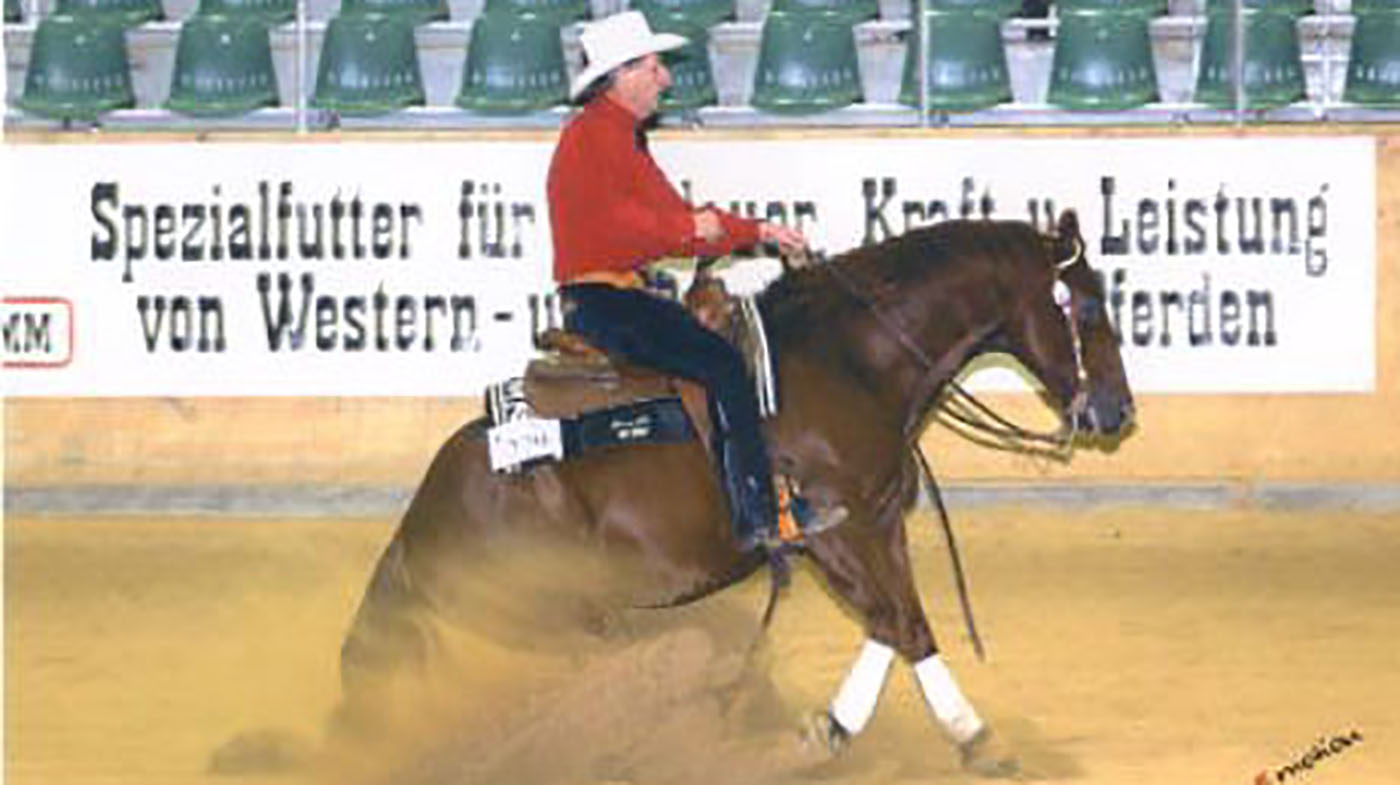 Try Something New In 2019 Western Riding Horse Hound