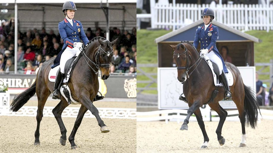 A Bolesworth battle: which of Charlotte Dujardin's stars could come out on top?