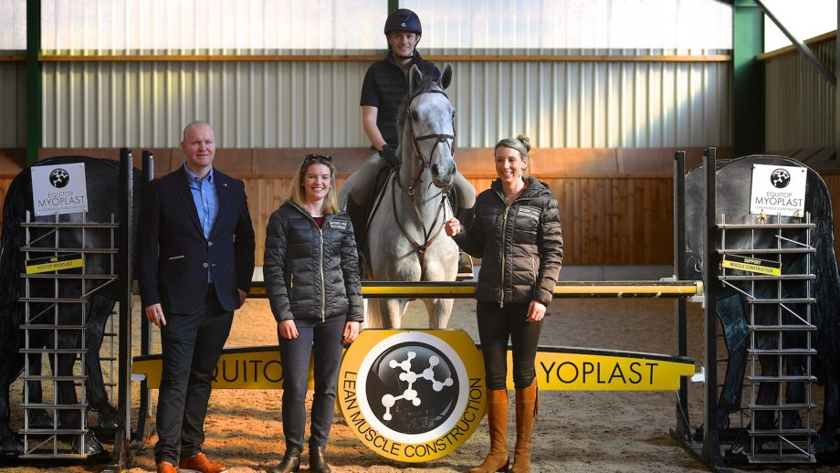 Bolesworth Young Horse Championship