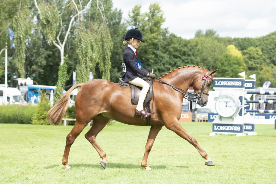 Find out who will be judges at the Royal International Horse Show 2021 including the horse and pony supremes