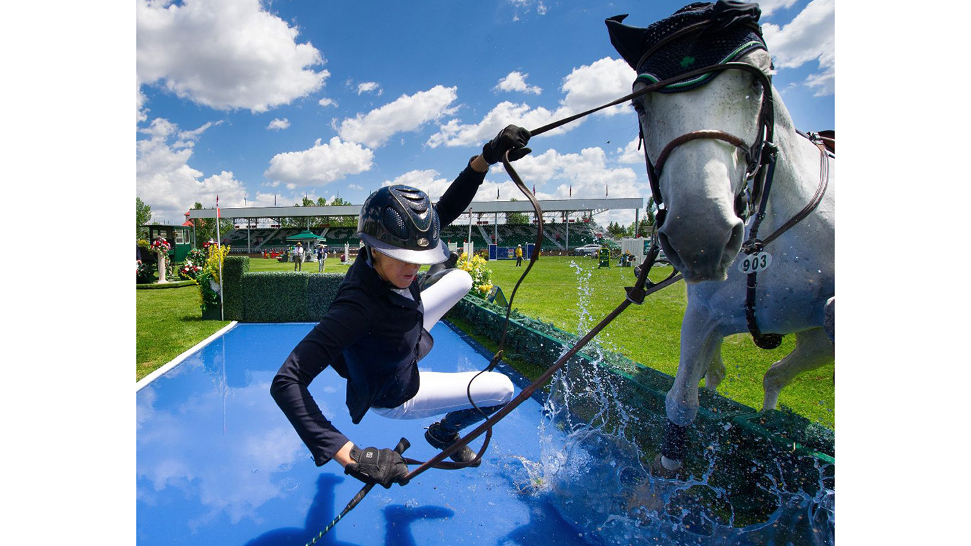 Shark Infested Waters 8 Classic Water Jump Fails Horse Hound