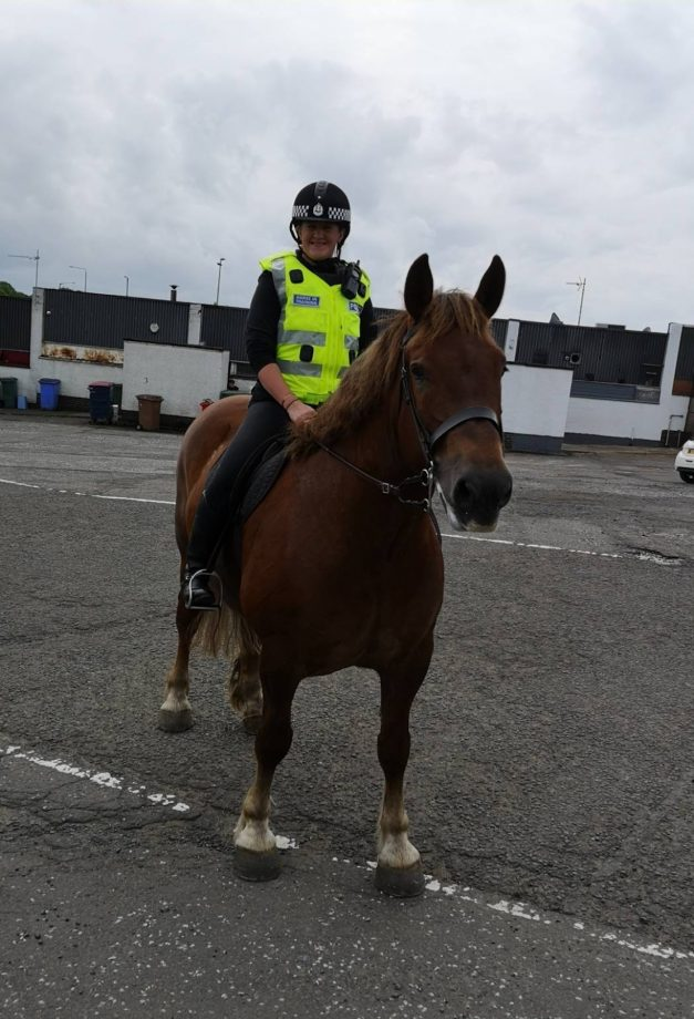 Mounted police 'delighted' as critically rare horse joins the force