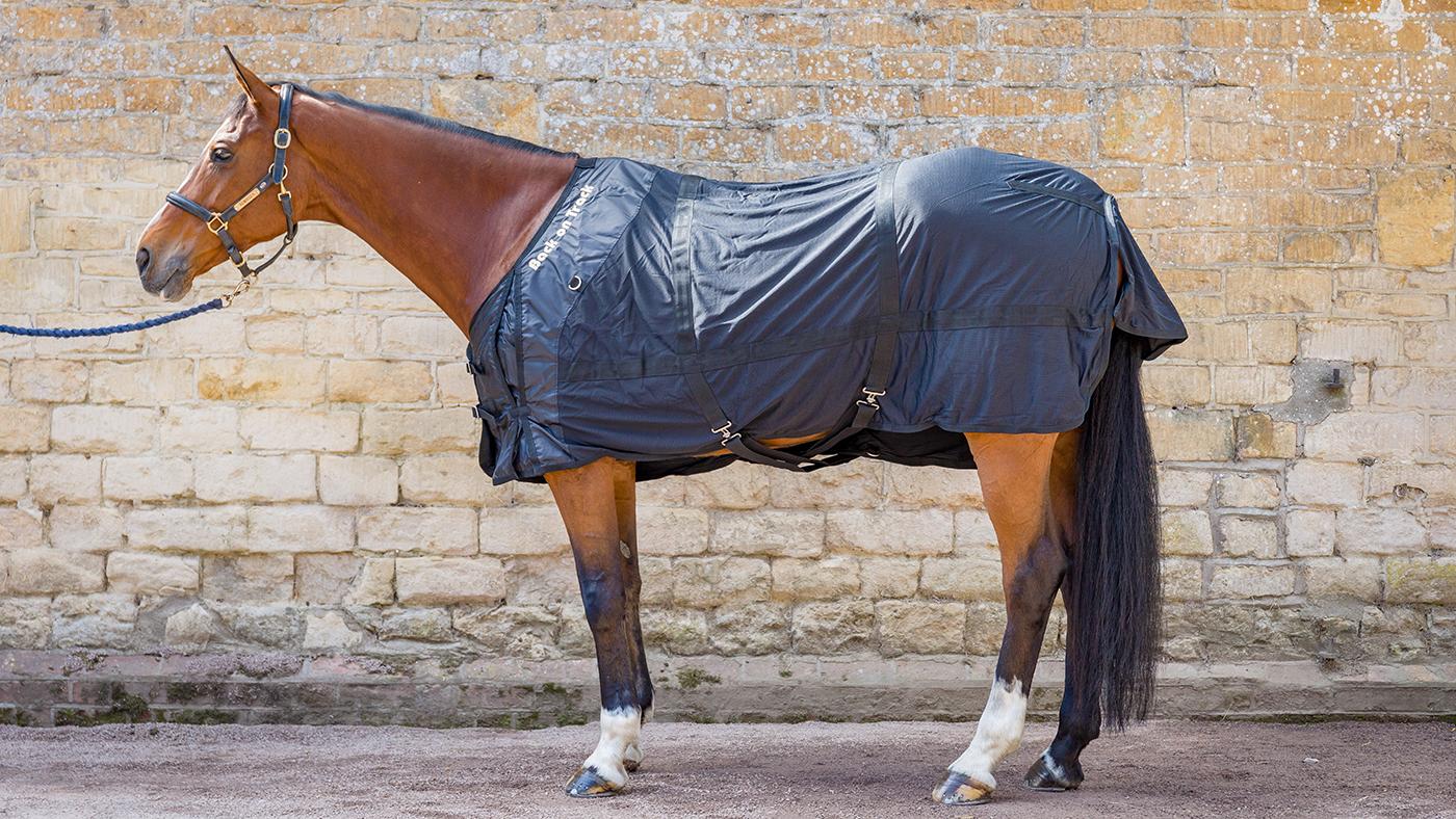 Best Travel Rugs 2019 Horse Hound S