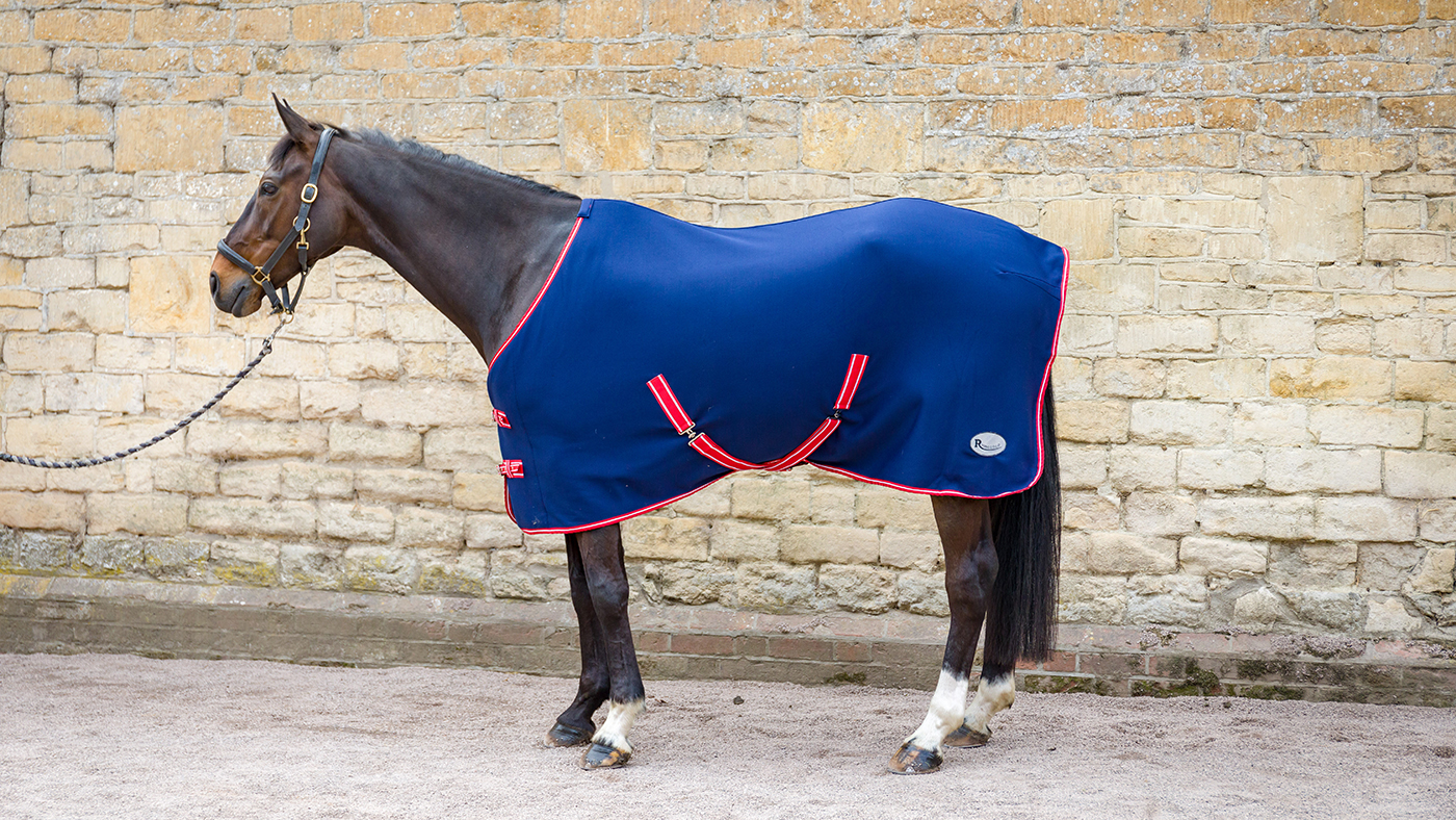 Best Travel Rugs 2019 Horse Hound S