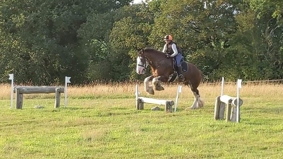 'These heavies need to do more': 18.3hh Clydesdale shows talent for cross-country