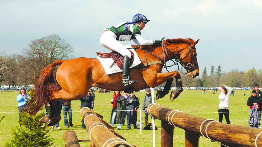 Farewell to Olympic medal-winner and 'horse of a lifetime'