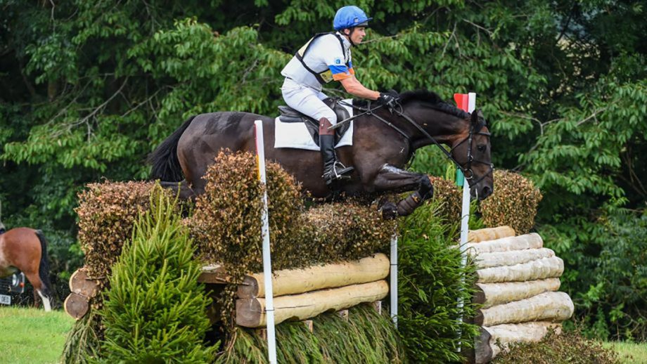 Francis Whittington at the British Festival of Eventing at Gatcombe